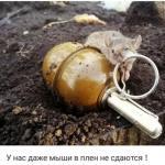 Screenshot_2019-02-22-19-13-30_ru.ok.android_1550841279082.jpg