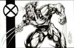 11_Gallow_Wolverine2.jpg